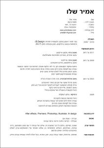 amir shalev hebrew resume