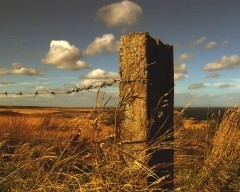 Rusty field post