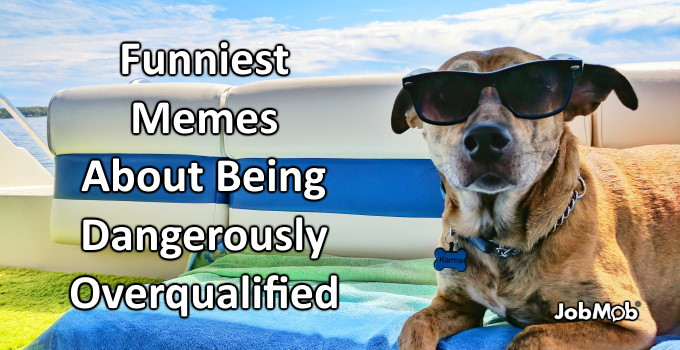 😆 Funniest Memes About Being Dangerously Overqualified
